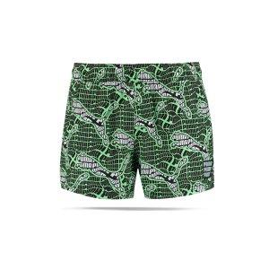 puma-badehose-gruen-f002-100001271-underwear_front.png