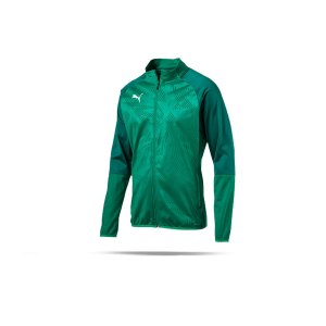 puma-cup-training-poly-jacket-core-gruen-f05-fussball-sport-mannschaft-spass-verein-656014.png