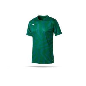 puma-cup-jersey-core-t-shirt-gruen-f05-fussball-teamsport-textil-t-shirts-703775.png