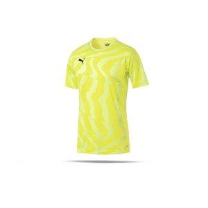 puma-cup-jersey-core-t-shirt-gelb-f46-fussball-teamsport-textil-t-shirts-703775.png