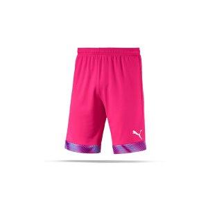 puma-cup-short-pink-lila-weiss-f41-fussball-teamsport-textil-shorts-704034.png