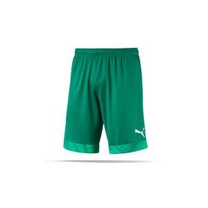puma-cup-short-kids-dunkelgruen-weiss-f05-fussball-teamsport-textil-shorts-704035.png