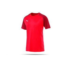 puma-cup-sideline-core-t-shirt-rot-f01-fussball-teamsport-textil-t-shirts-656051.png