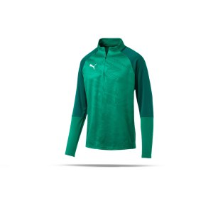 puma-cup-training-core-1-4-zip-top-gruen-f05-fussball-teamsport-textil-sweatshirts-656018.png
