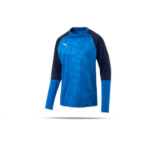 puma-cup-training-core-sweatshirt-blau-f02-fussball-teamsport-textil-sweatshirts-656021.png