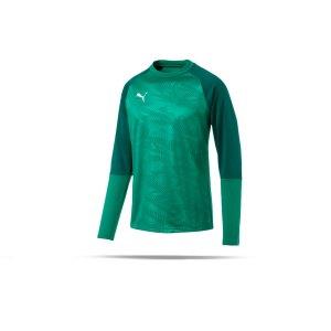 puma-cup-training-core-sweatshirt-gruen-f05-fussball-teamsport-textil-sweatshirts-656021.png