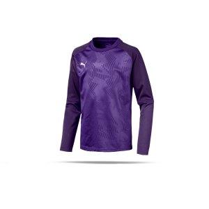 puma-cup-training-core-sweatshirt-kids-lila-f10-fussball-teamsport-textil-sweatshirts-656022.png