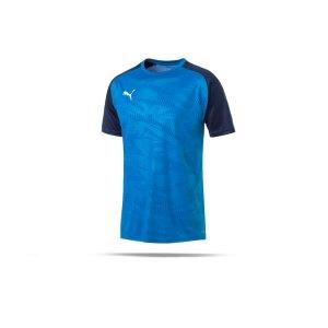 puma-cup-training-core-t-shirt-blau-f02-fussball-teamsport-textil-t-shirts-656027.png