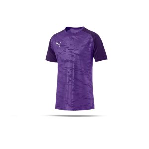 puma-cup-training-core-t-shirt-lila-f10-fussball-teamsport-textil-t-shirts-656027.png