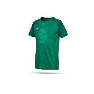 puma-cup-training-core-t-shirt-kids-gruen-f05-fussball-teamsport-textil-t-shirts-656028.png
