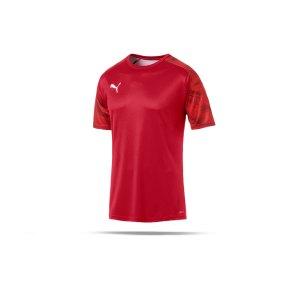 puma-cup-training-t-shirt-rot-f01-fussball-teamsport-textil-t-shirts-656023.png