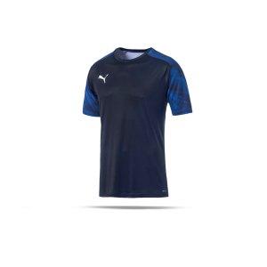 puma-cup-training-t-shirt-blau-f02-fussball-teamsport-textil-t-shirts-656023.png