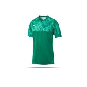 puma-cup-jersey-trikot-kurzarm-gruen-f05-fussball-teamsport-textil-trikots-703773.png