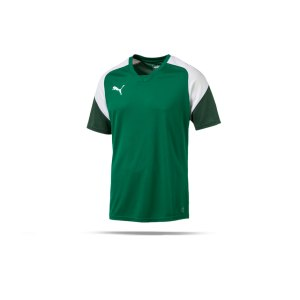puma-esito-4-trainingsshirt-f05-fussball-training-shirt-sport-team-mannschaft-kids-655221.png