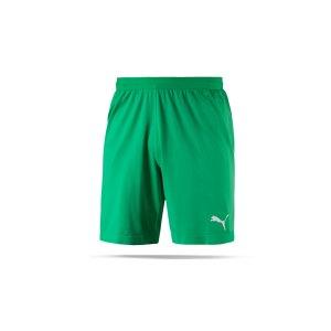 puma-final-evoknit-torwartshort-gruen-schwarz-f05-teamsport-teamwear-short-pant-fussballshort-521015001.png