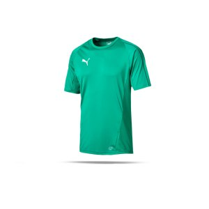puma-final-training-trikot-kurzarm-f05-teamsport-mannschaft-match-ausruesrung-655292.png