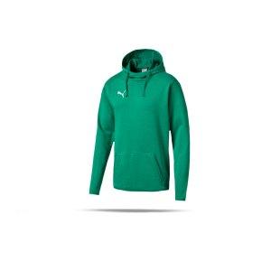 puma-liga-casuals-hoody-gruen-weiss-f05-trainingskleidung-teamsportequipment-vereinsausstattung-fussballbedarf-655307.png