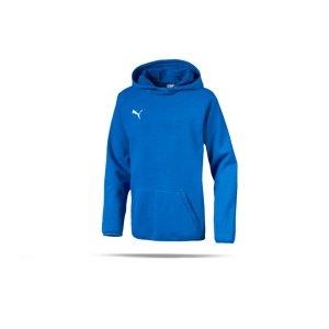 puma-liga-casuals-kapuzensweatshirt-kids-blau-f02-teamsport-textilien-sport-mannschaft-655636.png