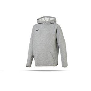 puma-liga-casuals-kapuzensweatshirt-kids-grau-f33-teamsport-textilien-sport-mannschaft-655636.png