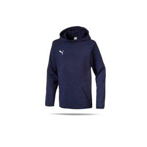 puma-liga-casuals-kapuzensweatshirt-kids-f06-fussball-spieler-teamsport-mannschaft-verein-655636.png