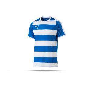 puma-liga-hooped-trikot-kurzarm-blau-weiss-f02-teamsport-textilien-sport-mannschaft-erwachsene-703422.png