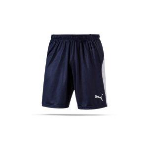 puma-liga-short-blau-weiss-f06-teamsport-textilien-sport-mannschaft-703431.png