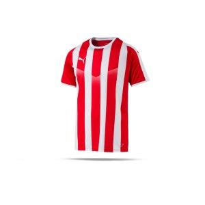 puma-liga-striped-trikot-kurzarm-rot-weiss-f01-teamsport-textilien-sport-mannschaft-erwachsene-703424.png
