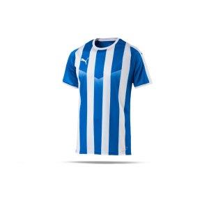 puma-liga-striped-trikot-kurzarm-blau-weiss-f02-teamsport-textilien-sport-mannschaft-erwachsene-703424.png