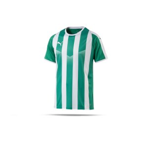 puma-liga-striped-trikot-kurzarm-gruen-weiss-f15-teamsport-textilien-sport-mannschaft-erwachsene-703424.png