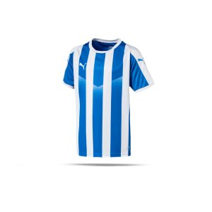 puma-liga-striped-trikot-kurzarm-kids-blau-f02-teamsport-textilien-sport-mannschaft-kinder-jugendliche-703425.png