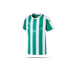 puma-liga-striped-trikot-kurzarm-kids-gruen-f15-teamsport-textilien-sport-mannschaft-kinder-jugendliche-703425.png