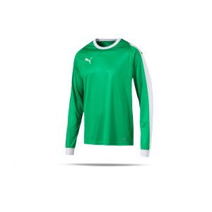 puma-liga-torwarttrikot-gruen-weiss-f05-trikot-torhueter-oberteil-langarm-mannschaftssport-ballsportart-fussball-703442.png