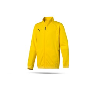 puma-liga-training-jacket-trainingsjacke-kids-f07-fussball-spieler-teamsport-mannschaft-verein-655688.png