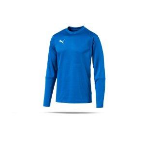 puma-liga-training-sweatshirt-blau-f02-teampsort-mannschaft-ausruestung-655669.png