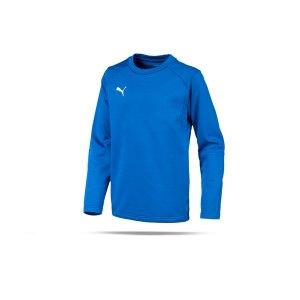 puma-liga-training-sweatshirt-kids-blau-f02-teampsort-mannschaft-ausruestung-655670.png