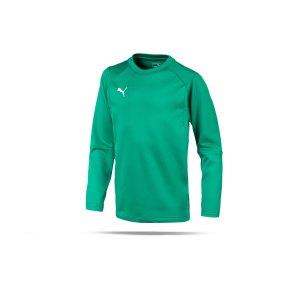 puma-liga-training-sweatshirt-kids-gruen-f05-teampsort-mannschaft-ausruestung-655670.png