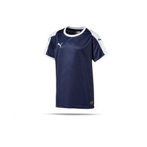 puma-liga-trikot-kurzarm-kids-blau-weiss-f06-kinder-sport-trikot-team-mannschaftssport-ballsportart-703418.png