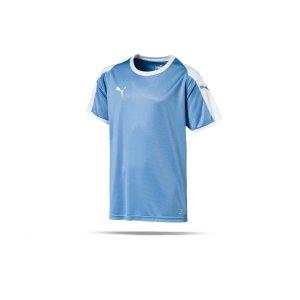 puma-liga-trikot-kurzarm-kids-blau-weiss-f18-kinder-sport-trikot-team-mannschaftssport-ballsportart-703418.png