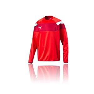puma-spirit-2-training-sweatshirt-teamsport-vereine-mannschaft-men-herren-rot-f01-654656.png