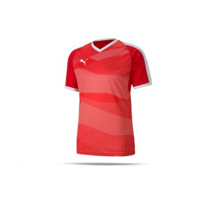 puma-teamfinal-indoor-trikot-kurzarm-rot-f01-fussball-teamsport-textil-trikots-704491.png
