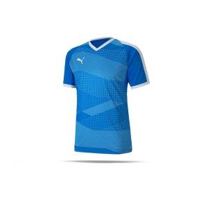 puma-teamfinal-indoor-trikot-kurzarm-blau-f02-fussball-teamsport-textil-trikots-704491.png