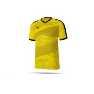 puma-teamfinal-indoor-trikot-kurzarm-gelb-f07-fussball-teamsport-textil-trikots-704491.png