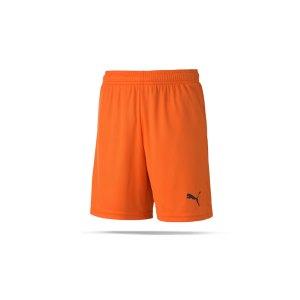 puma-teamgoal-23-knit-short-kids-orange-f08-fussball-teamsport-textil-shorts-704263.png