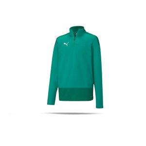 puma-teamgoal-23-training-1-4-zip-top-kids-f05-fussball-teamsport-textil-sweatshirts-656567.png