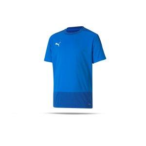 puma-teamgoal-23-training-trikot-kids-blau-f02-fussball-teamsport-textil-trikots-656569.png