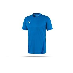 puma-teamgoal-23-trikot-kurzarm-blau-f02-fussball-teamsport-textil-trikots-704171.png