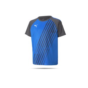 puma-teamliga-graphic-trikot-kids-blau-grau-f44-657218-teamsport_front.png