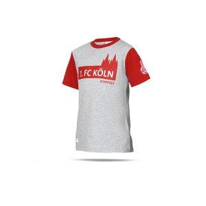 uhlsport-1-fc-koeln-3-0-freizeit-t-shirt-kids-grau-1003610011948k-fan-shop_front.png