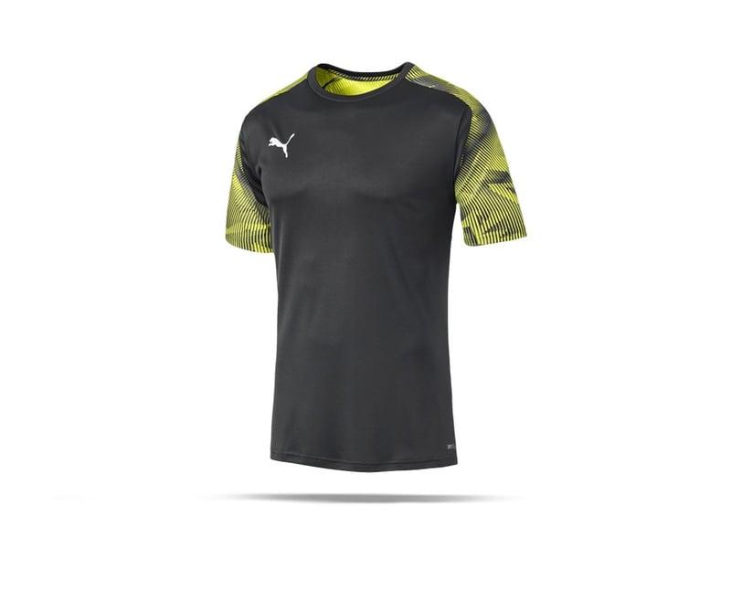 PUMA CUP Training T-Shirt (016) - grau
