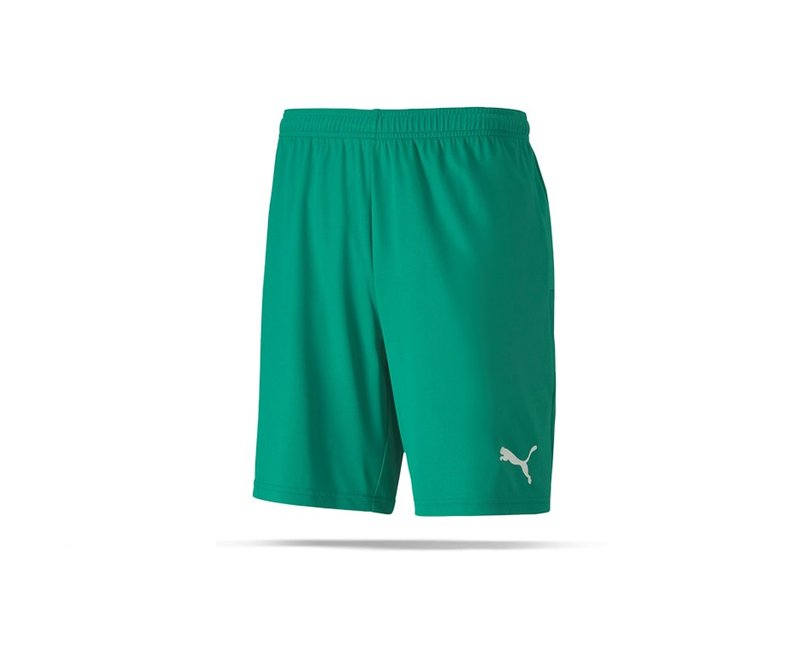 PUMA teamGOAL 23 Knit Shorts (005) - Gruen